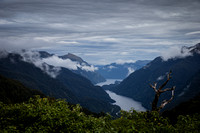 Day 12 - Doubtful Sound