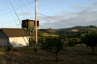 2004-05-17 Sebastopol Hills Evening